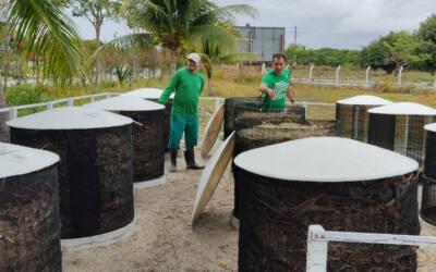 Profissionais do Ceará mostram o que fazer para ter um negócio sustentável